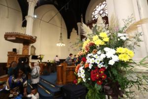 09/10/2016. Abbey Harvest. PHOTO: SAMBOAL/PHOTO